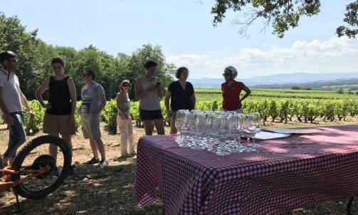 Dégustation au milieu du vignoble Beaujolais en Trottinette Villefranche sur sàone au nord de Lyon